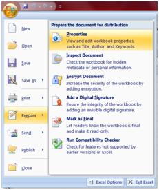 view document properties excel